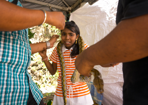 Girl Pausing With A Snake Around Her Neck In Annual Thaipusam Religious Festival, Southeast Asia, Kuala Lumpur, Malaysia