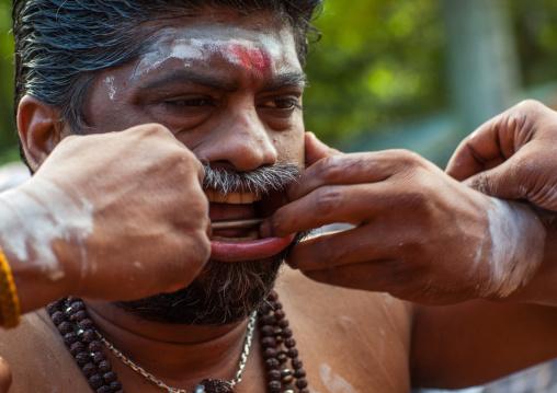 A Devotee Cheek Is Pierced With A Big Skewer By A Priest At Thaipusam Hindu Festival At Batu Caves, Southeast Asia, Kuala Lumpur, Malaysia