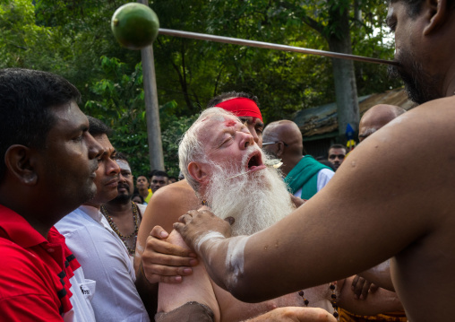 An Australian Hindu Devotee Cheek Is Pierced By A Priest At Thaipusam Hindu Festival At Batu Cave, Southeast Asia, Kuala Lumpur, Malaysia