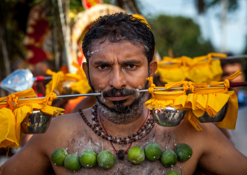 A Pierced Devotee Laden With Lemons On His Chest During The Thaipusam Hindu Festival At Batu Cave, Southeast Asia, Kuala Lumpur, Malaysia