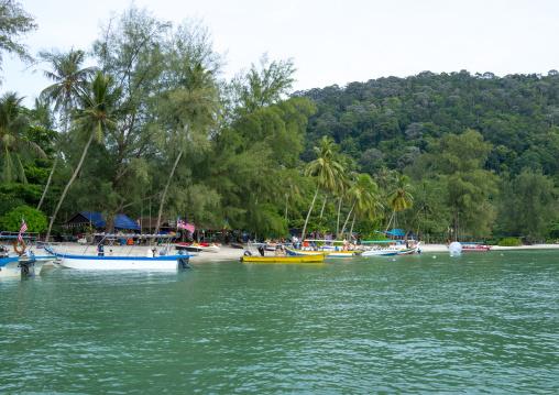 Monkey Beach In Nan National Park, Penang Island, George Town, Malaysia