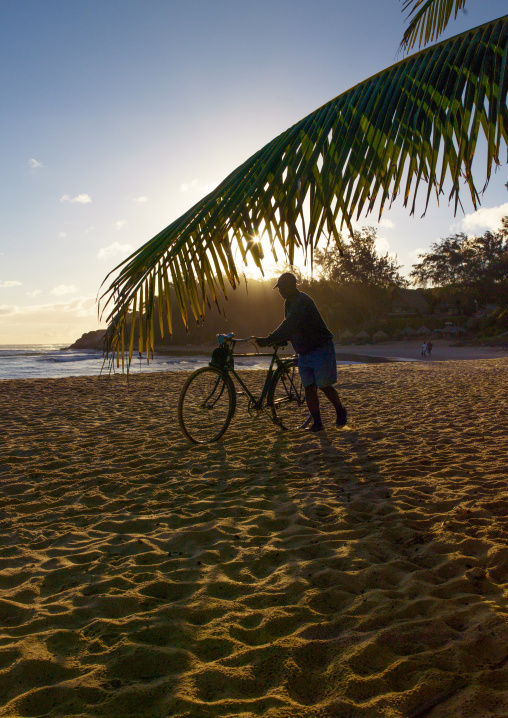 Man Pushing His Bicycle On The Beach, Tofo, Inhambane Province, Mozambique