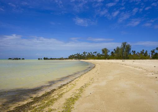 Beach, Quirimba Island, Cabo Delgado Province, Mozambique