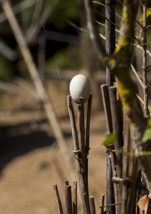 Egg Put By A Shaman To Bring Luck, Mindat, Myanmar