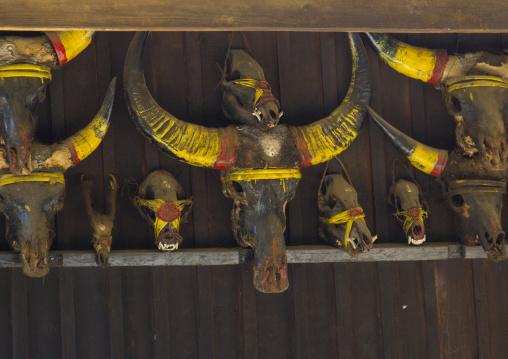 Buffalos And Gaurs Skulls On A Chin House, Mindat, Myanmar