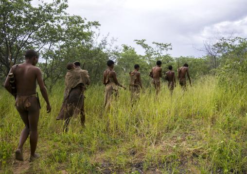 Line Of Bushman Hunters, Tsumkwe, Namibia