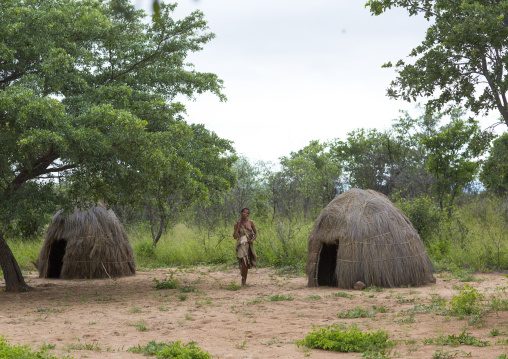Huts In A Traditional Village, Tsumkwe, Namibia