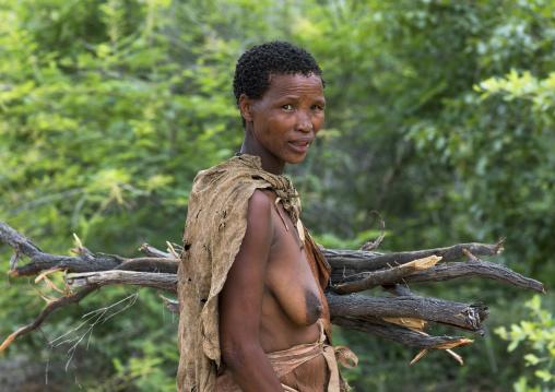 Bushman Woman Carrying Wood, Tsumkwe, Namibia