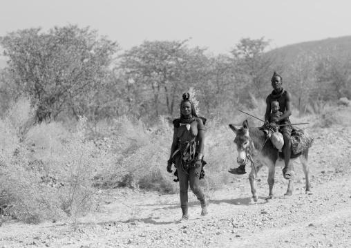 Himba Family With A Donkey, Namibia