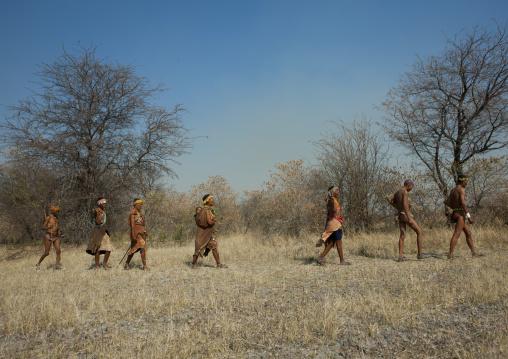 Group Of Sans Walking In The Bush, Namibia