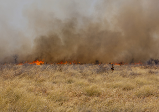 Fire In The Bush, Namibia