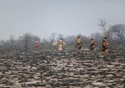 Group Of Sans Walking On Burnt Lands In The Bush, Namibia
