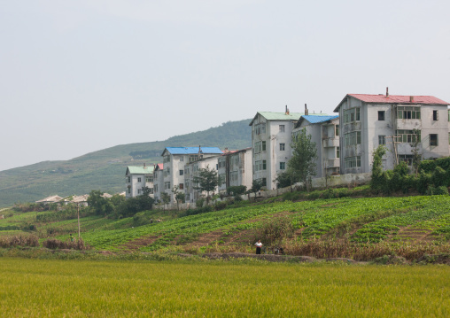 Farmers village in the countryside, Kangwon Province, Chonsam Cooperative Farm, North Korea