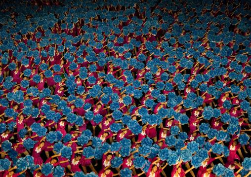 North Korean gymnasts holiding blue flowers during Arirang mass games in may day stadium, Pyongan Province, Pyongyang, North Korea