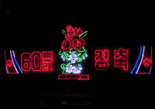 Kimjongilia illumination for sixty year anniversary of foundation of North Korea, Pyongan Province, Pyongyang, North Korea