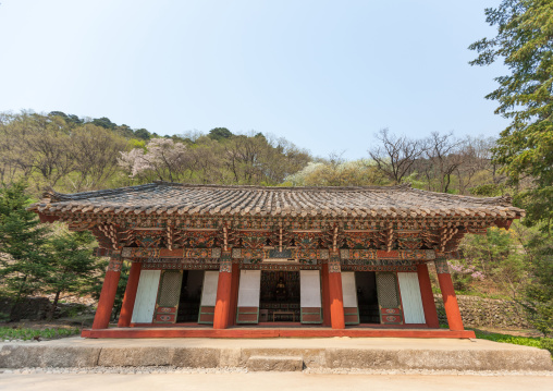 Pohyon-sa Korean buddhist temple, Hyangsan county, Mount Myohyang, North Korea