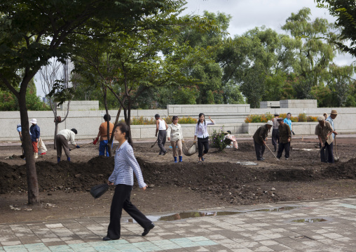 North Korean people doing collective works in the street, Pyongan Province, Pyongyang, North Korea