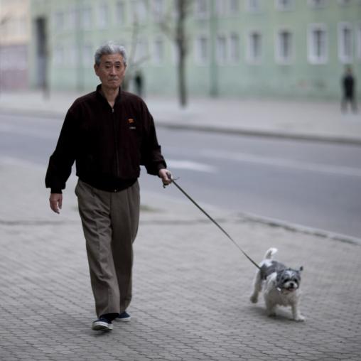 North Korean man taking his dog out, Pyongan Province, Pyongyang, North Korea