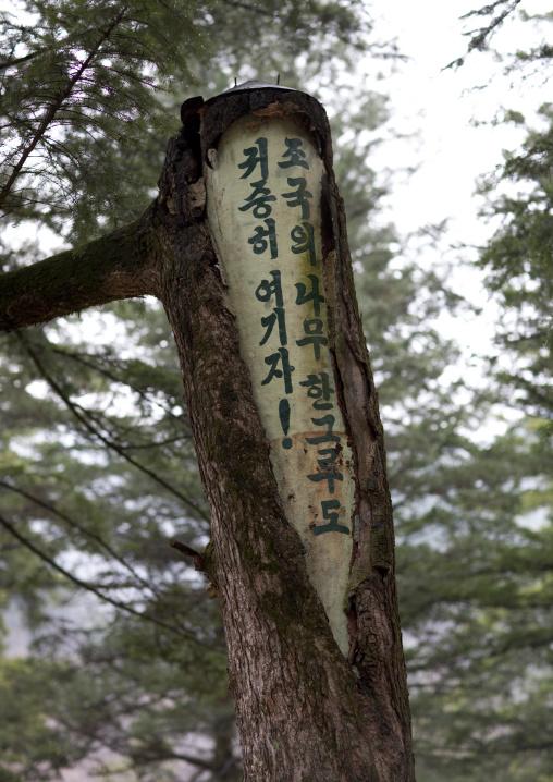 Propaganda slogan carved in Pohyon-sa Korean buddhist temple, Hyangsan county, Mount Myohyang, North Korea