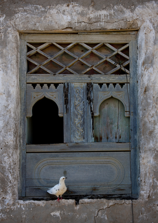 Old Blue Wooden Window With A Pigeon Standing Beside, Mirbat, Oman