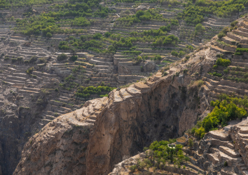 Old village with terraces to grow roses, Jebel Akhdar, Sayq, Oman