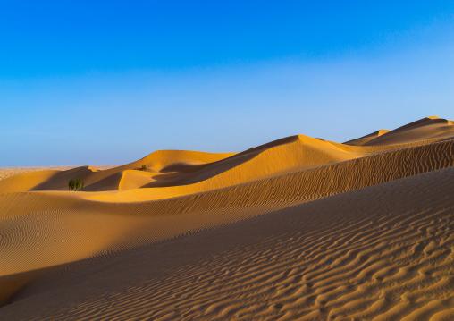 Sand dune sin rub al khali desert, Dhofar Governorate, Rub al Khali, Oman