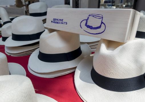 Panama, Province Of Panama, Panama City, Panama Hats For Sale In A Local Market In Casco Viejo