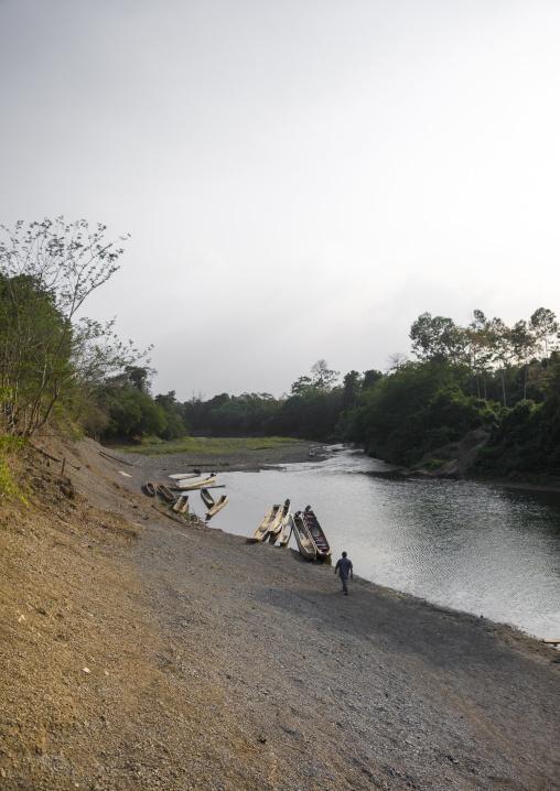 Panama, Darien Province, Alto Playona, Río Chucunaque Riverbank