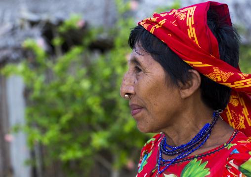 Panama, San Blas Islands, Mamitupu, Profile Of A Portrait Of Kuna Tribe Woman