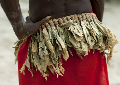 Man from Paplieng tribe in traditional vegetal clothing, New Ireland Province, Kavieng, Papua New Guinea