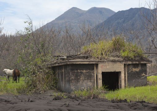World war two bunker, East New Britain Province, Rabaul, Papua New Guinea