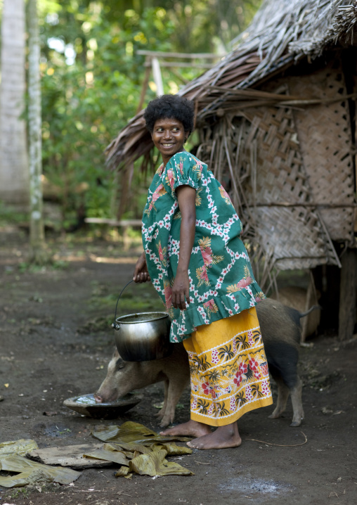 Woman feeding pigs in a village, Milne Bay Province, Trobriand Island, Papua New Guinea