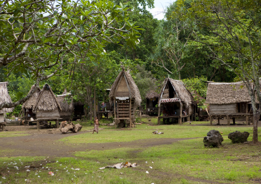 Traditional village with houses and yam houses, Milne Bay Province, Trobriand Island, Papua New Guinea