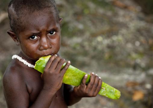 Boy eating a papaya, Autonomous Region of Bougainville, Bougainville, Papua New Guinea