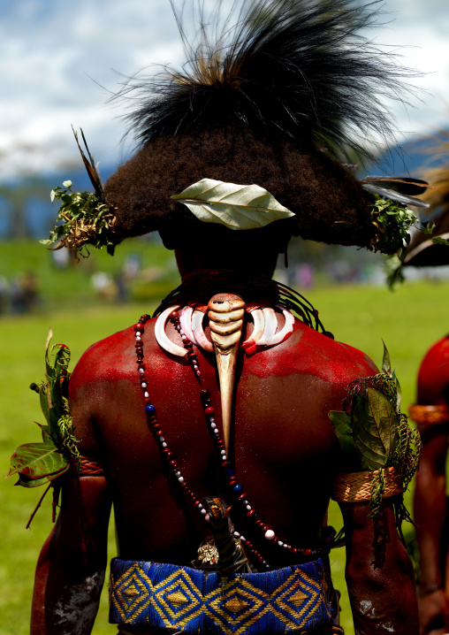Huli wigman with a Cassowary bone on the back during a sing sing, Western Highlands Province, Mount Hagen, Papua New Guinea