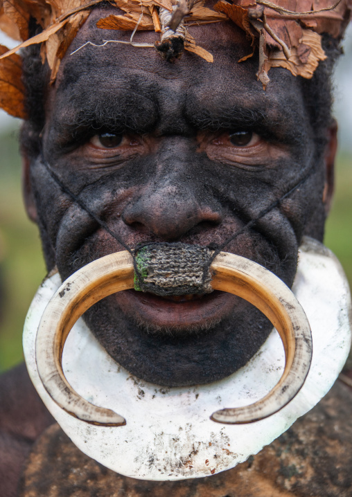 Whagi man tribe with black face during a sing-sing, Western Highlands Province, Mount Hagen, Papua New Guinea