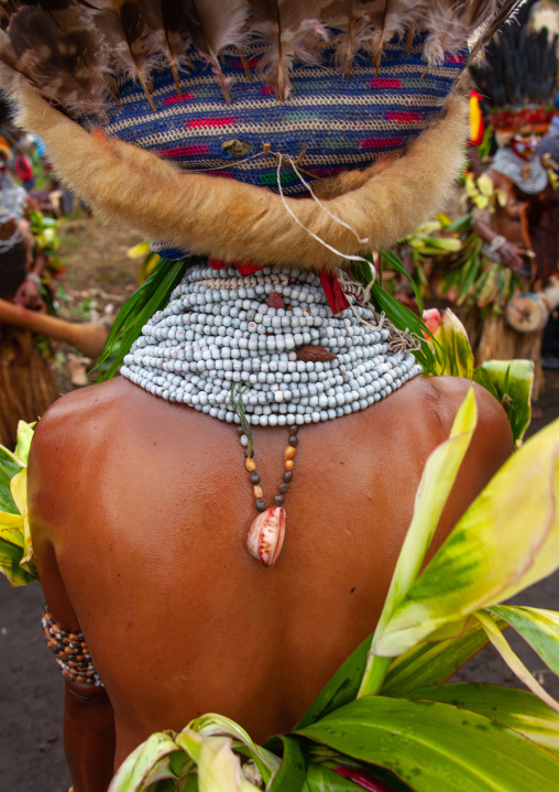 Melpa tribe woman back decoration during a sing-sing, Western Highlands Province, Mount Hagen, Papua New Guinea