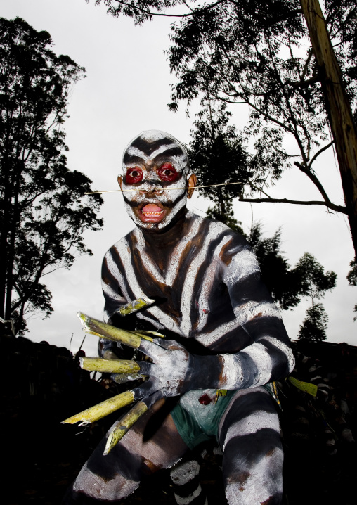 Snake man during a sing sing ceremony, Western Highlands Province, Mount Hagen, Papua New Guinea