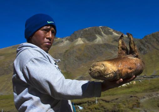 Teenager Selling Donkey Head As A Cure, Qoyllur Riti, Ocongate Cuzco, Peru