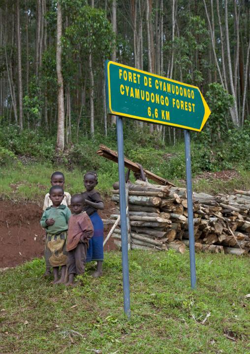 Rwanda boys in the forest, Western Province, Cyamudongo, Rwanda