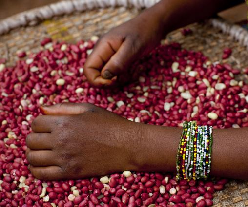 Woman selling peanuts in the market, Kigali Province, Kigali, Rwanda