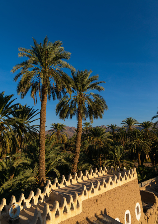 Old mud house in the middle of palm trees, Najran Province, Najran, Saudi Arabia
