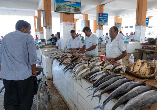 Fish market, Jizan Province, Jizan, Saudi Arabia