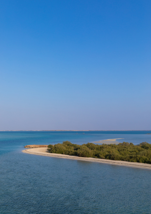 Empty beach with mangrove, Red Sea, Farasan, Saudi Arabia