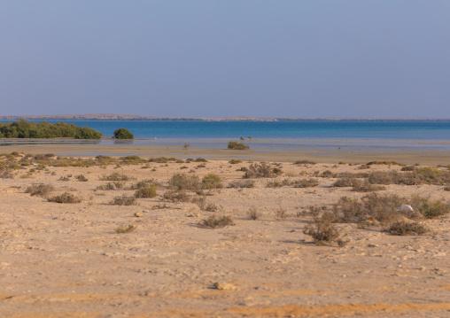 Empty beach, Red Sea, Farasan, Saudi Arabia