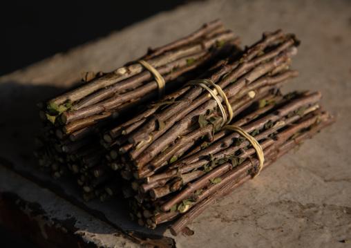 Wood sticks used as toothbrushes, Asir province, Al Habeel, Saudi Arabia