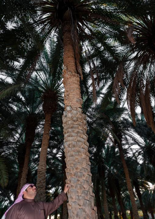 Saudi man in front of a palm tree, Al-Jawf Province, Sakaka, Saudi Arabia