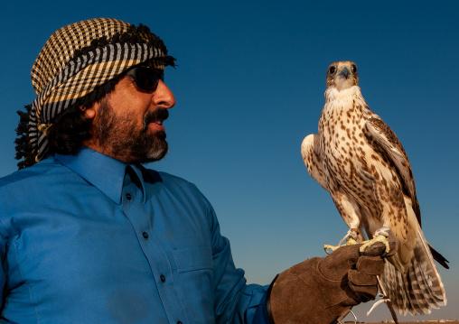 Saudi man with falcon perching on hand, Al-Jawf Province, Sakaka, Saudi Arabia