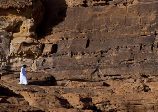 Petroglyphs on rocks, Al Madinah Province, Alula, Saudi Arabia