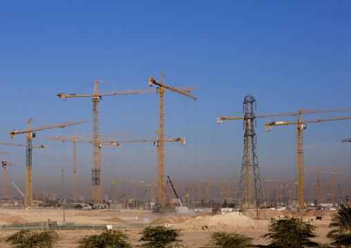 Cranes in Princess nora bint abdulrahman university, Riyadh Province, Riyadh, Saudi Arabia